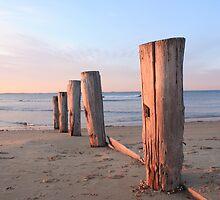 Mornington Peninsula  by Patricia Gibson