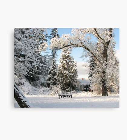 Winter wonderland! Canvas Print