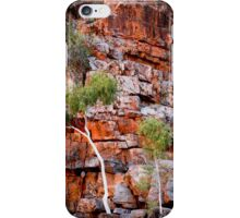 Ghost gum on red cliff iPhone Case/Skin