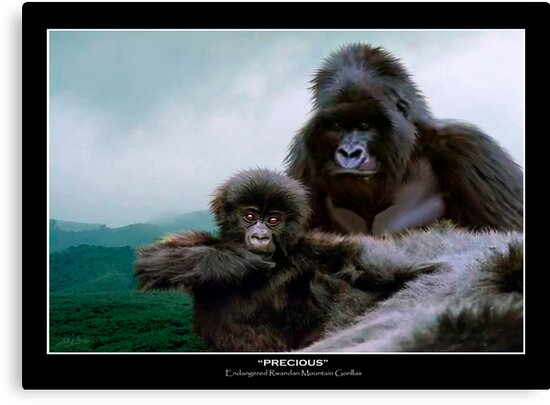 """Precious"" (Mountain Gorillas) by Skye Ryan-Evans"