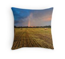 Hay Paddock Rainbow Throw Pillow