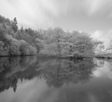 Staindale Lake  by Paul McGuire