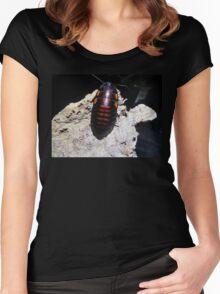 Flat Horn Hisser Roach  Women's Fitted Scoop T-Shirt