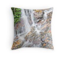 Tristania Falls, Dorrigo National Park, NSW, Australia Throw Pillow