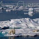 Ice Retreat - Christmas Card by Steve Bulford