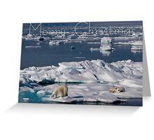 Ice Retreat - Christmas Card Greeting Card