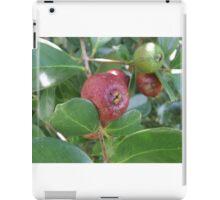 Mini Guava iPad Case/Skin