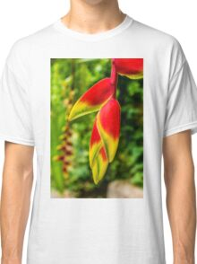 Birds of paradise flower Classic T-Shirt