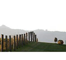 Tweed River Art Gallery Photographic Print