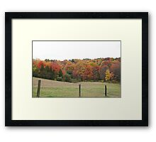 Cow Pasture Framed Print