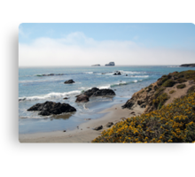 Fog Rolling Coastal Canvas Print