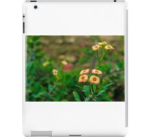 Crown of Thorns Flower iPad Case/Skin