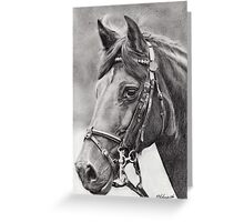 horse portrait (4692) Greeting Card