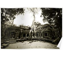 Temple at Angkor Poster