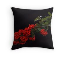 Pyracantha Stem on black  Throw Pillow