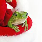 Santa&#x27;s Little  Green Helper by JulieM