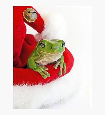Santa's Little  Green Helper Photographic Print