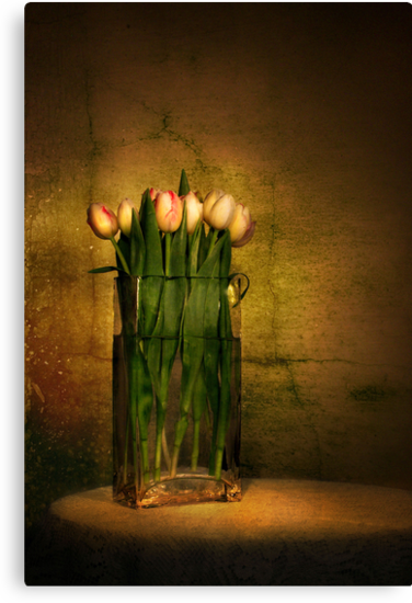 Tulips by Heather Prince ( Hartkamp )