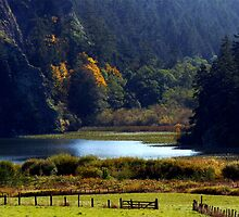 Headwaters of Lake Campbell by Rick Lawler
