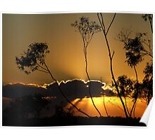 "Sunrise,Clouds & GumTrees"" Poster"