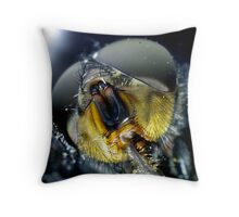 Face of a Fly Throw Pillow