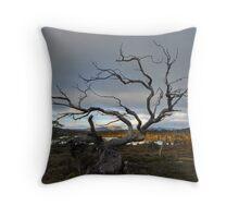 A hard life, Overland Track, Tasmania Throw Pillow