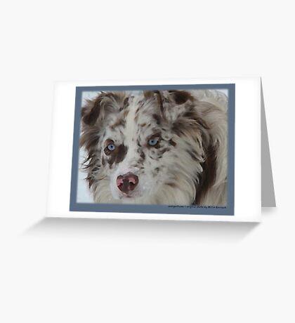 Australian Shepherd Feb Greeting Card