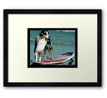 Australian Shepherd Jun Framed Print