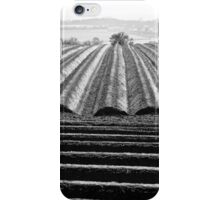Ploughed Field 01 (Northamptonshire) iPhone Case/Skin