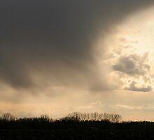 A Glimpse of Heaven by Stephen Thomas