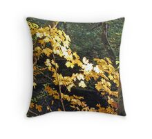 """""""Maple Leafs In The Afternoon Sun"""" Throw Pillow"""
