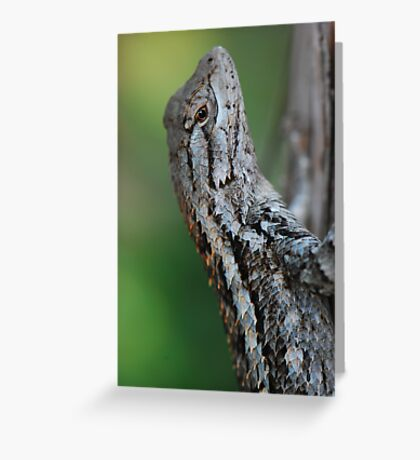 Scaled Beauty Greeting Card