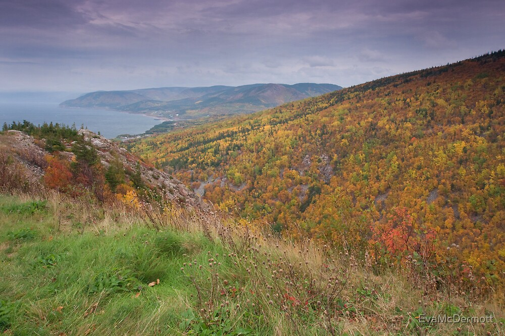 Pleasent Bay From the Cabot Trail by EvaMcDermott