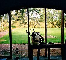 McLaren Vale Winery, Sth Australia by Lopine