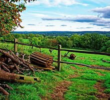 Beautiful English Countryside by atomov
