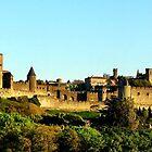 Magnificent Carcassonne by hans p olsen