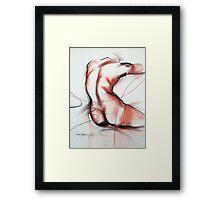 figure4 Framed Print