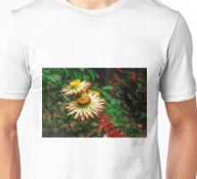 Straw Flower ( Helichrysum Bracteatum) Unisex T-Shirt