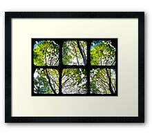 Look Through My Window Framed Print