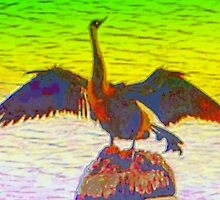 Anhinga graphic by ♥⊱ B. Randi Bailey
