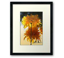 Wild Dahlia Framed Print