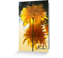Wild Dahlia Greeting Card