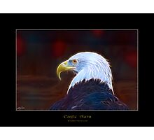 """Eagle Aura"" (Bald Eagle) Photographic Print"