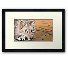 silent desert Framed Print