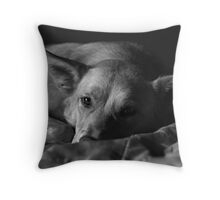 Happy to be Home Throw Pillow