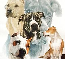 American Staffordshire Terrier /Ghost by BarbBarcikKeith