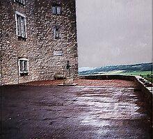 castle at dusk by guy natav