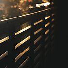 Railing, railing ... lights back on! by Catherine C.  Turner