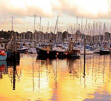 Lymington Gold by daive