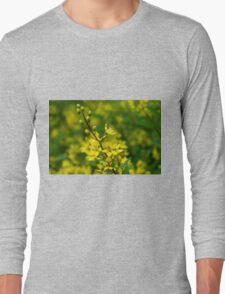 Yellow & Green Long Sleeve T-Shirt